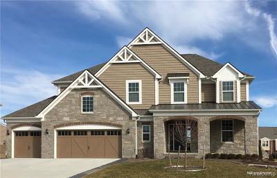 Lake Orion Single Family Home For Sale: 222 Gunnison