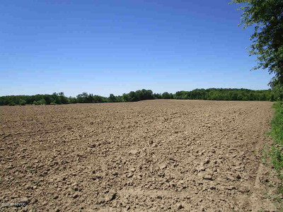 Camden MI Residential Lots & Land For Sale: $1