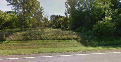 Ann Arbor Residential Lots & Land For Sale: 5280 Waterfall Ln