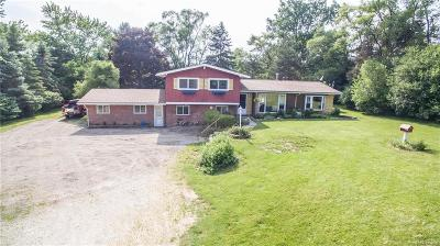 Washtenaw County Single Family Home For Sale: 4200 S Maple Rd