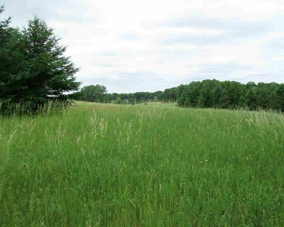 Grass Lake MI Residential Lots & Land For Sale: $499,000