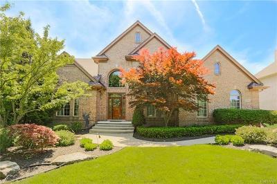 Northville Single Family Home For Sale: 16560 Brooklane Blvd