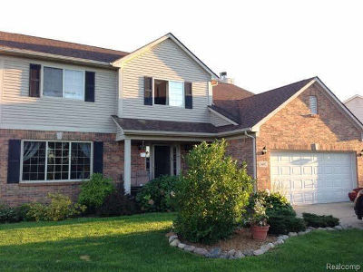 Chelsea Single Family Home For Sale: 1482 Carston Ln