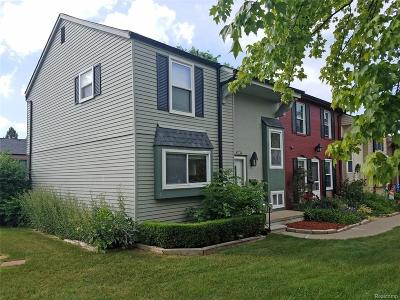 Ann Arbor Condo/Townhouse For Sale: 3267 Bolgos Cir