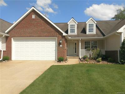 Jackson County Condo/Townhouse For Sale: 847 E Barrington Circle