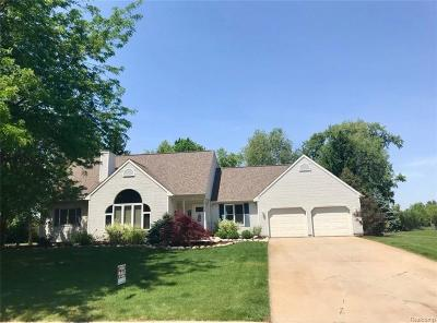 Williamston Single Family Home For Sale: 2347 Hiddenview Ln