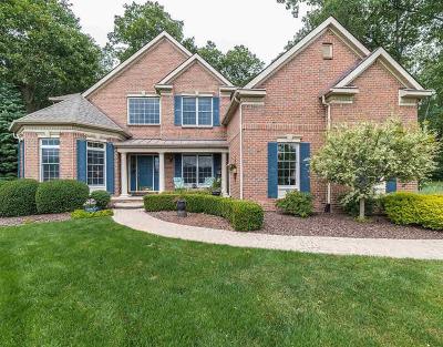 Washtenaw County Single Family Home For Sale: 7560 Secretariat Dr