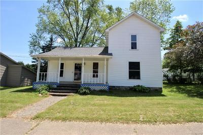 Stockbridge Single Family Home For Sale: 715 E Main St