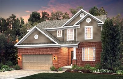 Ann Arbor Single Family Home For Sale: 711 Groveland Cir