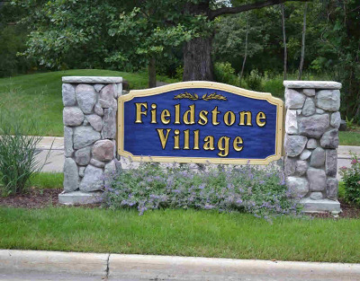 Chelsea Condo/Townhouse For Sale: 409 Fieldstone Ct