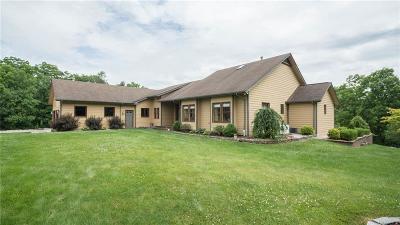 Washtenaw County Single Family Home For Sale: 8950 Warren Rd