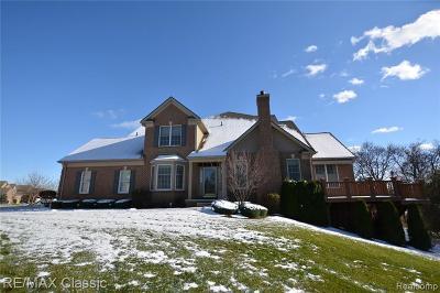 Northville Condo/Townhouse For Sale: 45023 Broadmoor Cir S