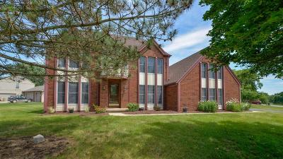 Ann Arbor Single Family Home For Sale: 1704 Mallard Cove Dr
