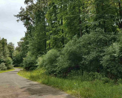 Dexter MI Residential Lots & Land For Sale: $95,000