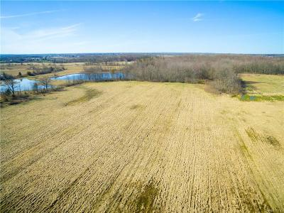 Adrian MI Residential Lots & Land For Sale: $390,000