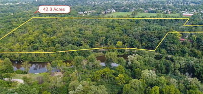 Ann Arbor MI Residential Lots & Land For Sale: $1,750,000