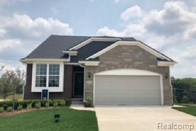 Washtenaw County Single Family Home For Sale: 2758 St Regis Way