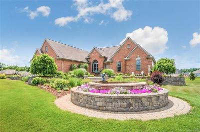 Brighton Single Family Home For Sale: 106 E Auburn Trl