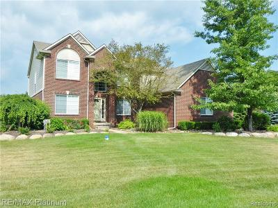 South Lyon Single Family Home For Sale: 10396 Otter Dr