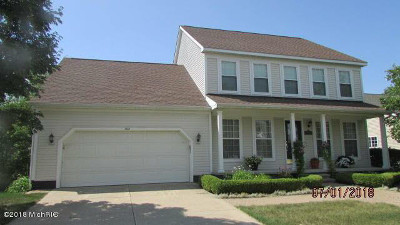 Washtenaw County Single Family Home For Sale: 3621 Meadow View Dr