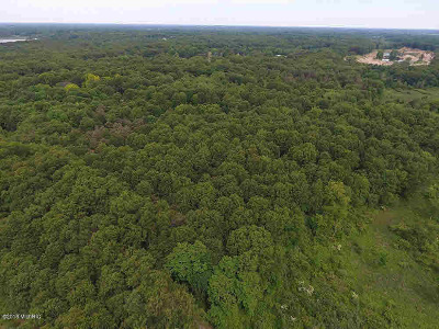 Jackson MI Residential Lots & Land For Sale: $109,000