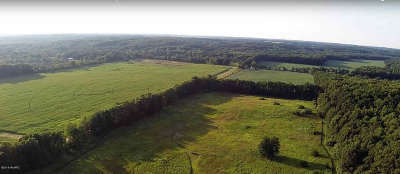 Jonesville MI Residential Lots & Land For Sale: $299,500