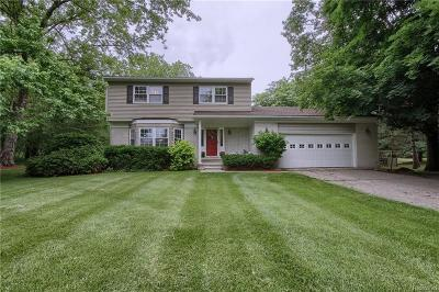 Washtenaw County Single Family Home For Sale: 7329 Merritt Rd
