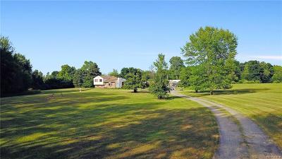 Washtenaw County Single Family Home For Sale: 9500 N Dixboro Rd