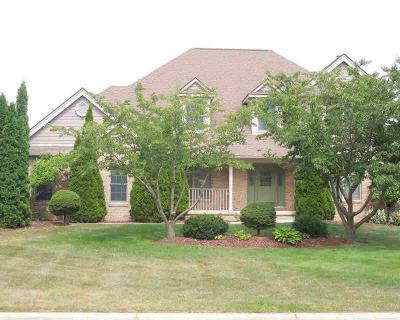 Ann Arbor Single Family Home For Sale: 4679 W Sawgrass Dr