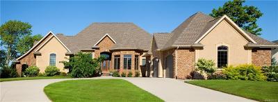 Washtenaw County Single Family Home For Sale: 3706 Dixboro Road