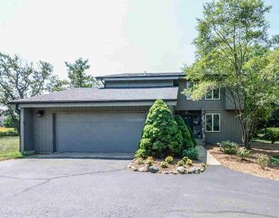 Washtenaw County Single Family Home For Sale: 6455 Scio Church Rd