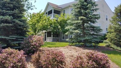 Ann Arbor Condo/Townhouse For Sale: 1071 Joyce Ln