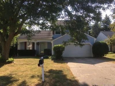 Lansing Single Family Home For Sale: 337 Park Meadows Dr
