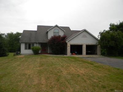 Eaton Rapids Single Family Home For Sale: 1688 S Michigan Rd