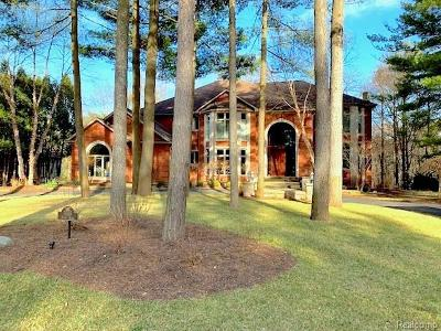 Brighton Single Family Home For Sale: 5555 River Ridge Dr