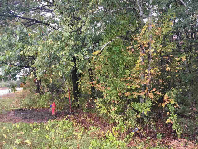 Residential Lots & Land For Sale: 10647 Canada Way