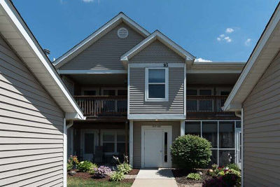 Ann Arbor Condo/Townhouse For Sale: 1429 Millbrook Trl