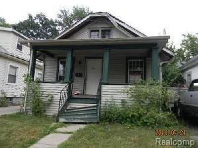 Lansing Single Family Home For Sale: 229 Clifford St