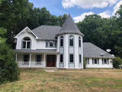 Williamston Single Family Home For Sale: 781 Holt Rd