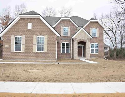Ann Arbor Single Family Home For Sale: 5033 Red Fox Run