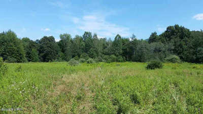 Jonesville MI Residential Lots & Land For Sale: $84,900