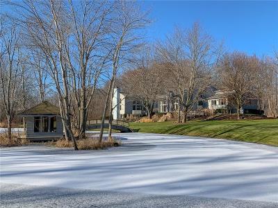Washtenaw County Single Family Home For Sale: 7455 Fox Hill Ln