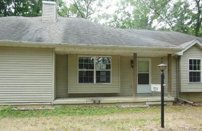 Grass Lake Single Family Home For Sale: 904 Chicago Dr