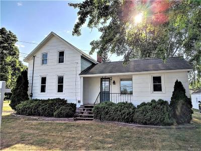 Stockbridge Single Family Home For Sale: 835 S Clinton St
