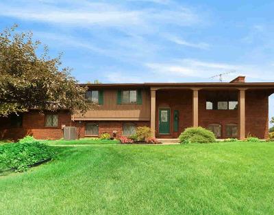Stockbridge Single Family Home For Sale: 4240 Brogan Rd