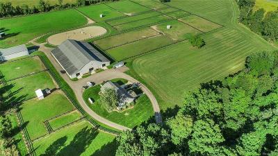 Webberville Single Family Home For Sale: 4647 E Holt Rd