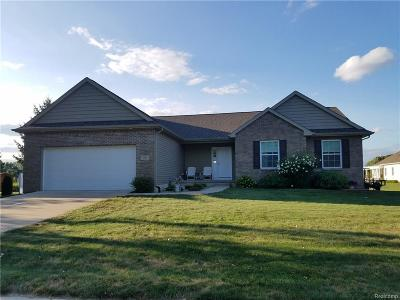 Eaton Rapids Single Family Home For Sale: 707 Hastay Blvd