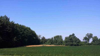 Jonesville MI Residential Lots & Land For Sale: $229,000
