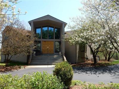Washtenaw County Single Family Home For Sale: 3781 Delhi Overlook St