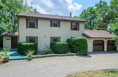 Dexter Single Family Home For Sale: 9113 Stoneyfield Ct